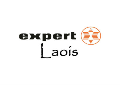 Expert Laois New Website Launched